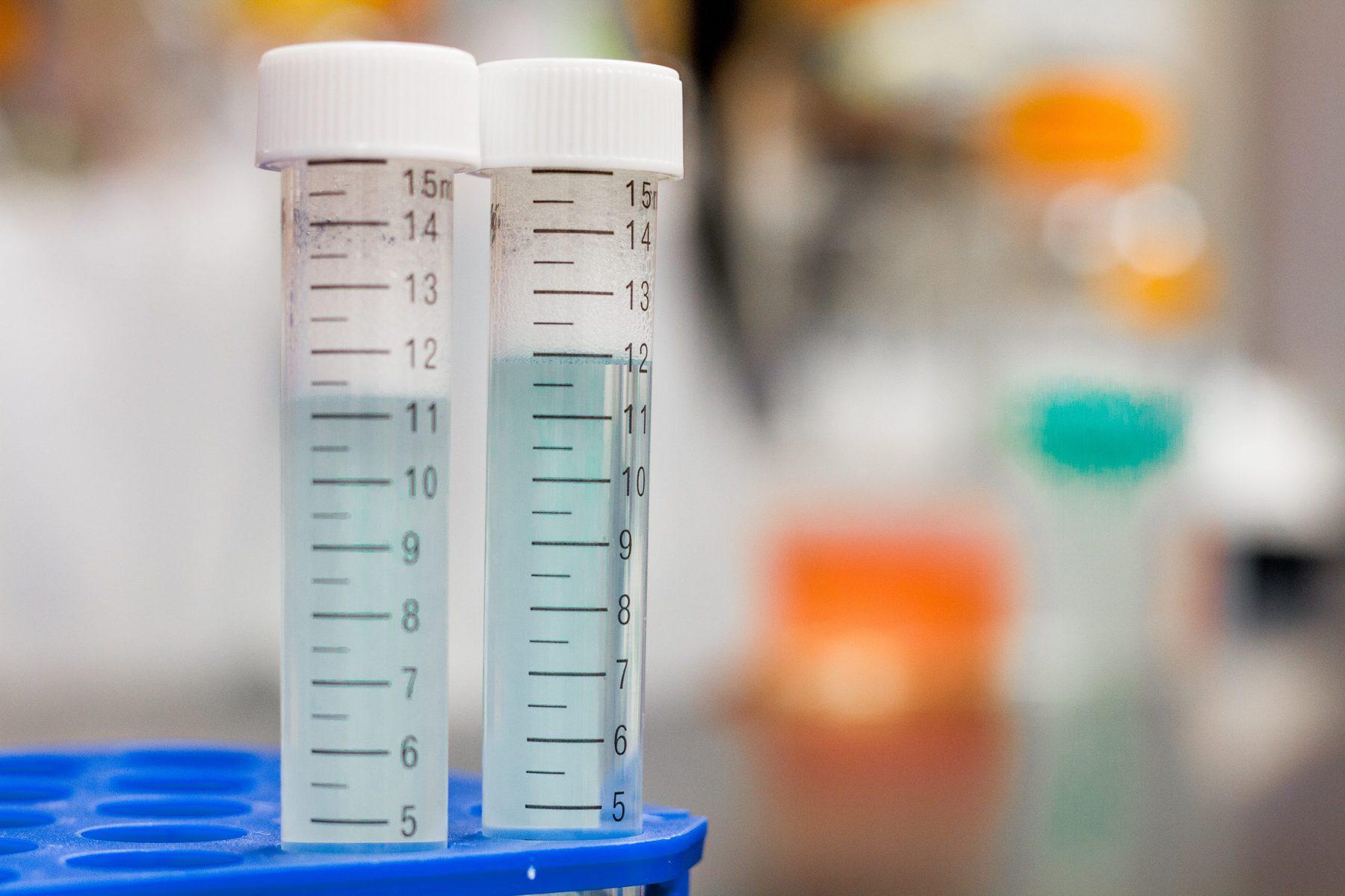 Reagenzgläser in Labor